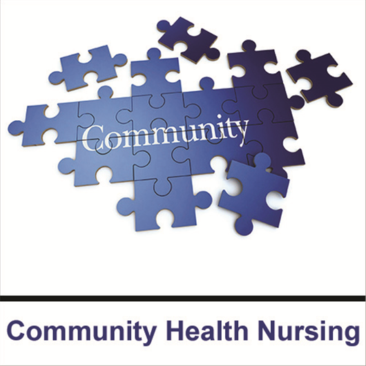 community health nursing project ideas