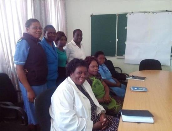 MCHNLA-Africa participants and project team at Thyolo District Hospital